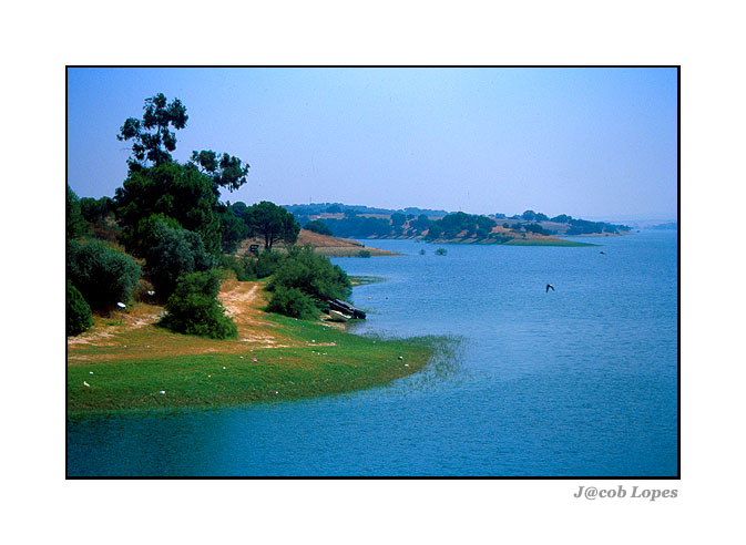 "photo ""Landscape in velvia"" tags: landscape, summer, water"