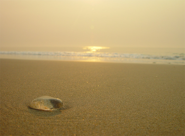 "photo ""A tear drop of the ocean"" tags: landscape, sunset, water"