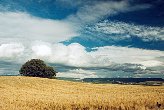 "photo ""june"" tags: landscape, clouds, summer"