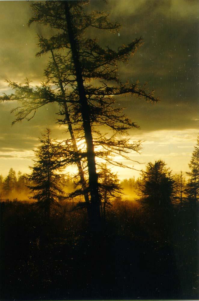 "photo ""2"" tags: landscape, sunset"