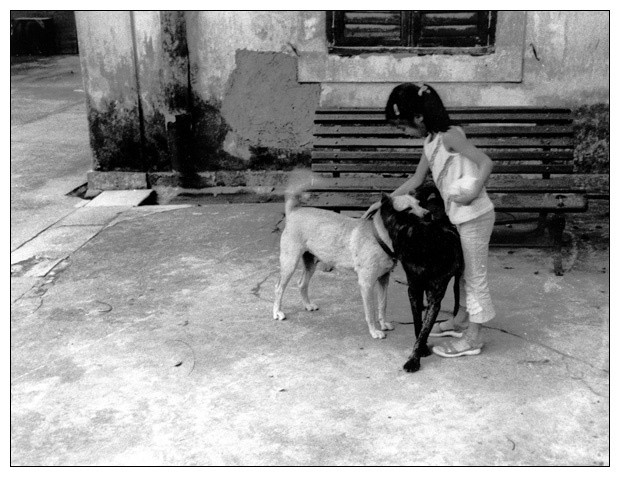 "photo ""Chinese girl with dogs"" tags: misc., portrait, children"