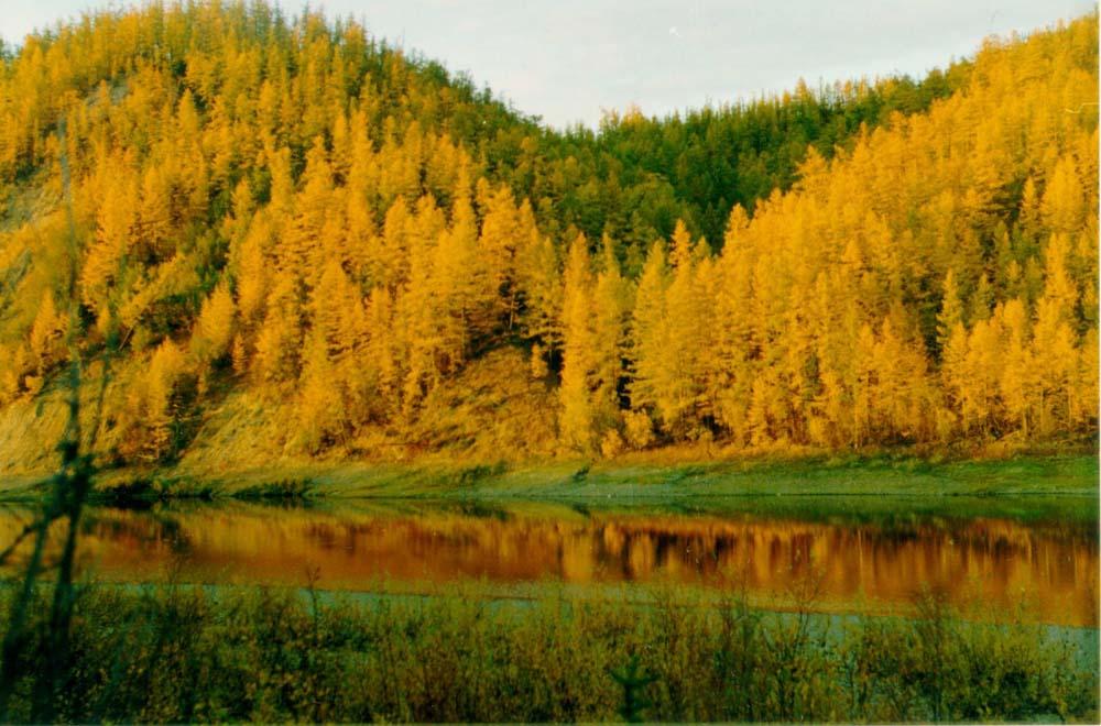 """photo """"2000"""" tags: landscape, autumn"""