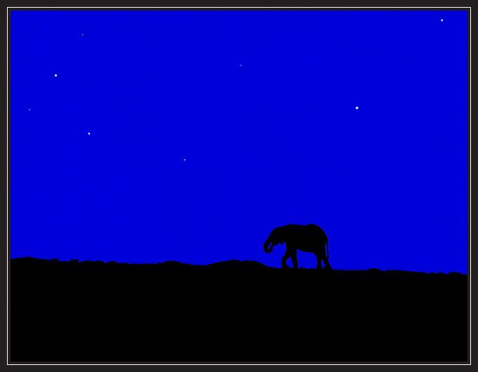 """фото """"Quo vadis"""" метки: природа, пейзаж, дикие животные, ночь"""