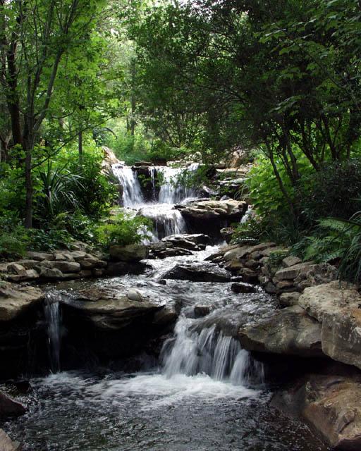 "фото ""Just Beautiful"" метки: пейзаж, вода, лес"