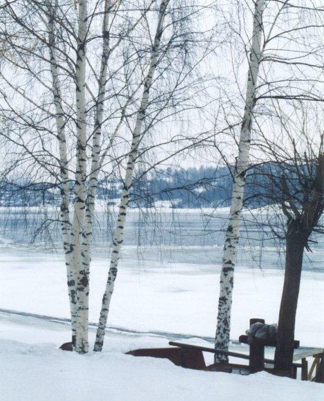 """фото """"The Volga at Plyos"""" метки: пейзаж, вода, зима"""
