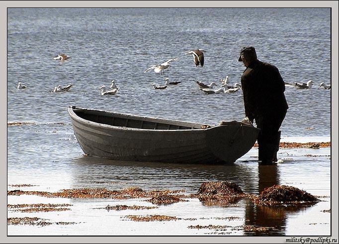"""фото """"В море..."""" метки: разное,"""
