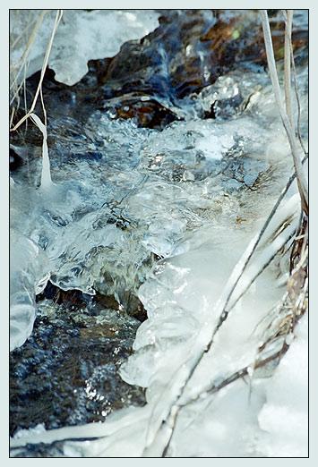 """фото """"Вода"""" метки: пейзаж, весна, вода"""