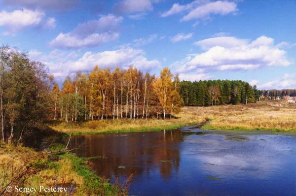 "фото ""Золотая осень"" метки: пейзаж, осень"