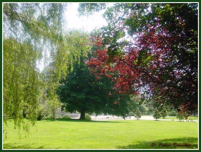 """фото """"ONU Gardens"""" метки: пейзаж, природа, лето, цветы"""