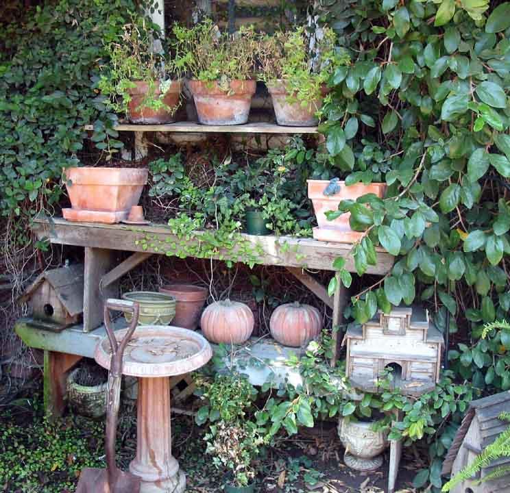 "фото ""garden memories"" метки: натюрморт,"