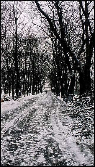 """фото """"****"""" метки: пейзаж, зима"""