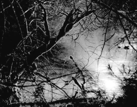 "фото ""Mystery Waters"" метки: пейзаж, вода"
