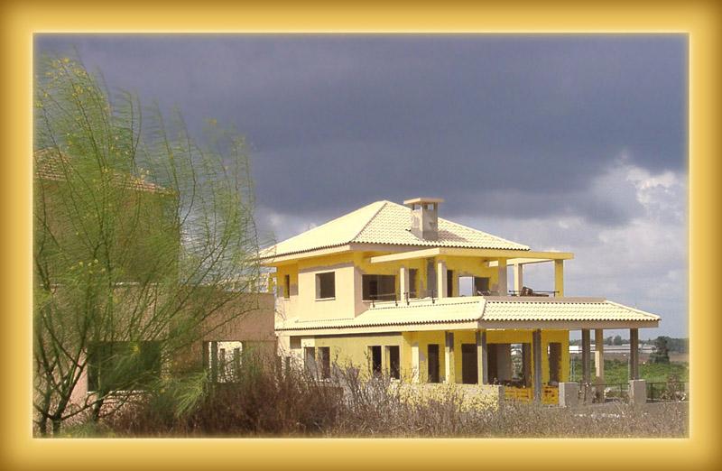 """фото """"И поместили в желтый дом ..."""" метки: архитектура, пейзаж,"""