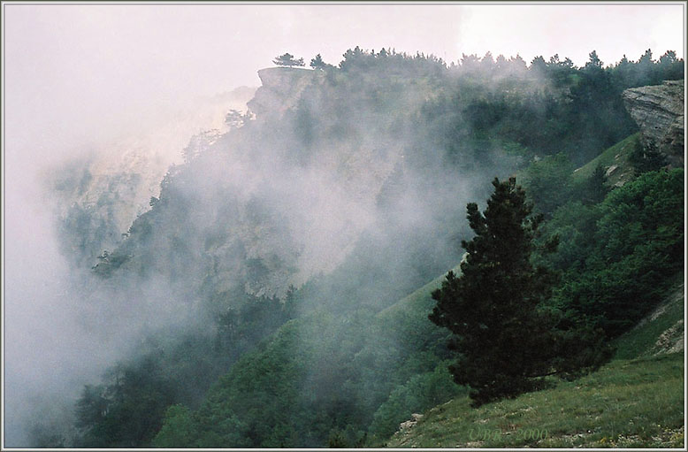 "фото ""Тумано-тучи на склонах Ай-Пэтри"" метки: пейзаж, горы, облака"