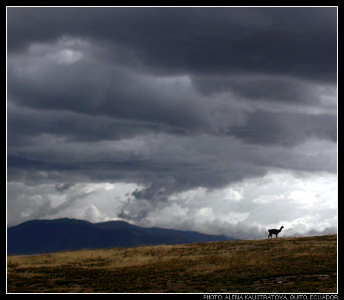 """фото """"Ecuador"""" метки: путешествия, пейзаж, Южная Америка, горы"""