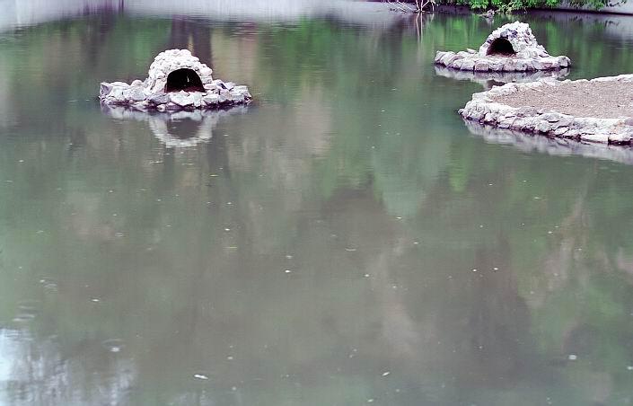 """фото """"Отражения ..."""" метки: пейзаж, природа, вода"""