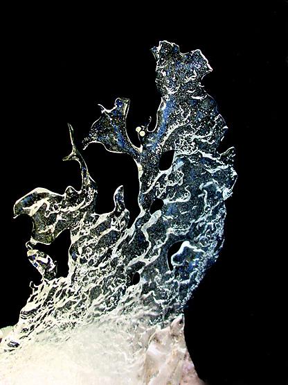 """фото """"Sculpture....by Mother Nature"""" метки: макро и крупный план,"""