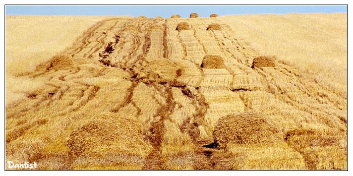 """фото """"Старт с препятствиями"""" метки: пейзаж, осень"""