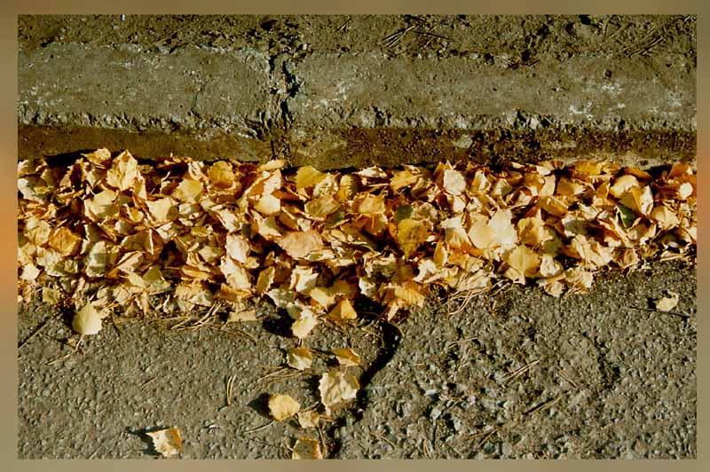"""фото """"Autumn reminisence"""" метки: абстракция, разное,"""