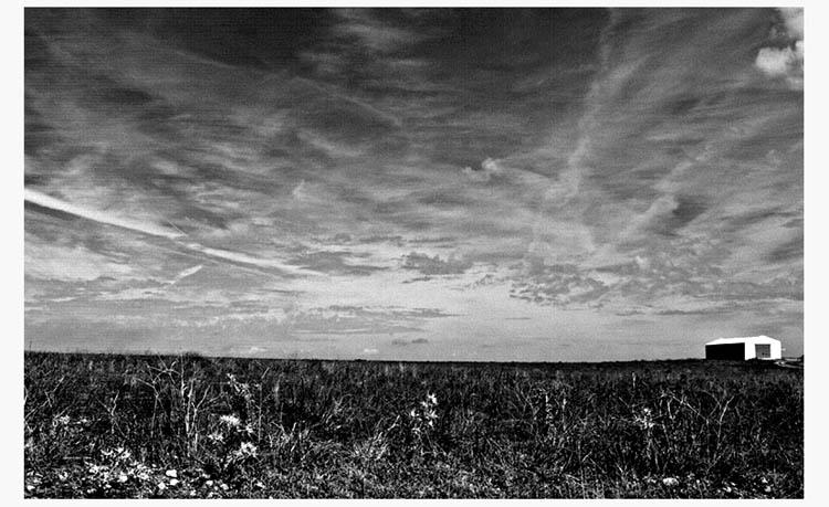 """фото """"fields"""" метки: пейзаж, осень"""