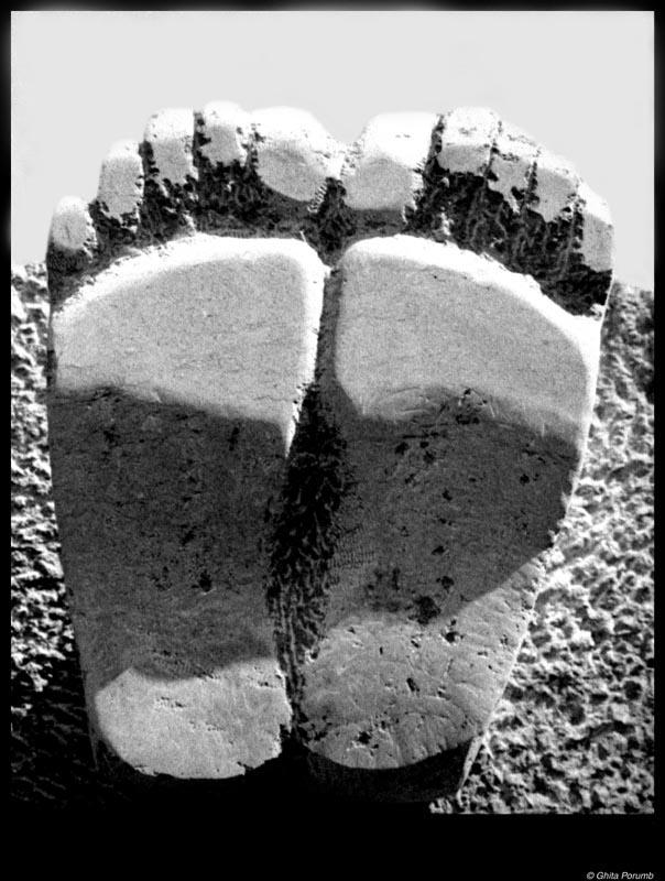 """фото """"Foots"""" метки: разное,"""