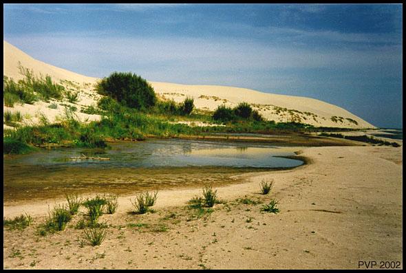 """фото """"Дюны (1)"""" метки: путешествия, пейзаж, Европа"""