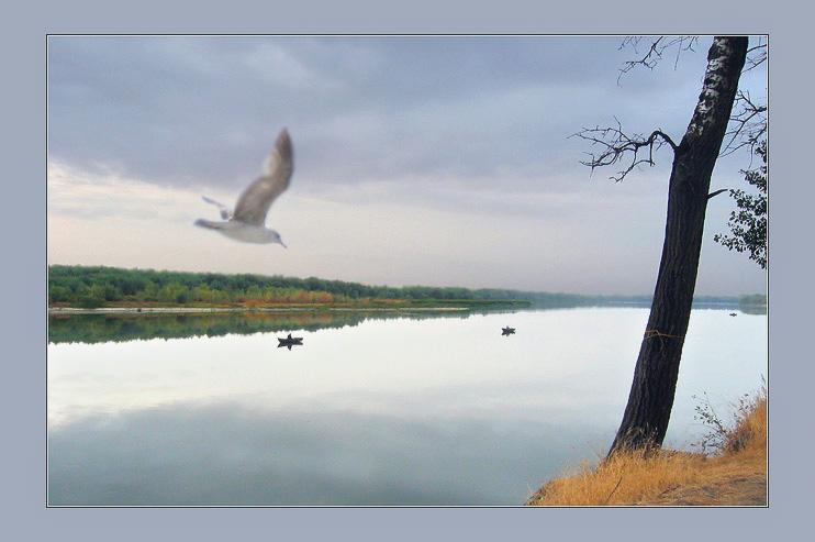 """фото """"zzz"""" метки: пейзаж, осень"""