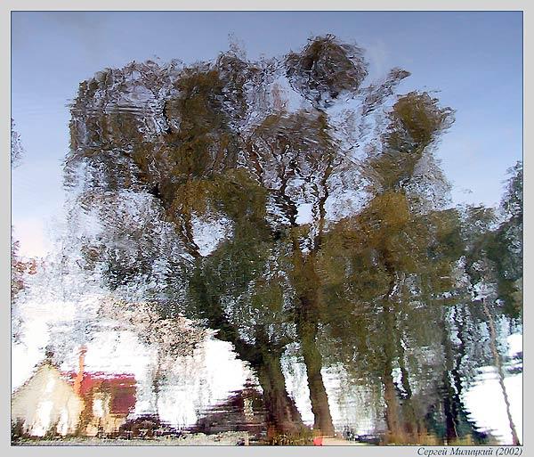 """фото """"Дерево на берегу реки..."""" метки: пейзаж, вода, осень"""