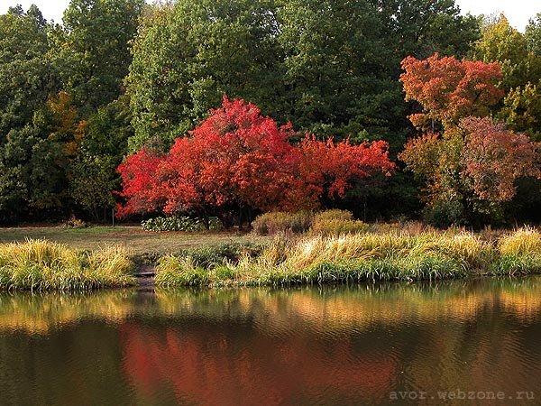 """фото """"Цветной мир"""" метки: природа, путешествия,"""