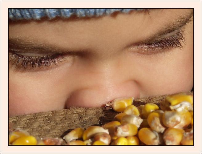 """фото """"Кукуруза"""" метки: портрет, разное, дети"""
