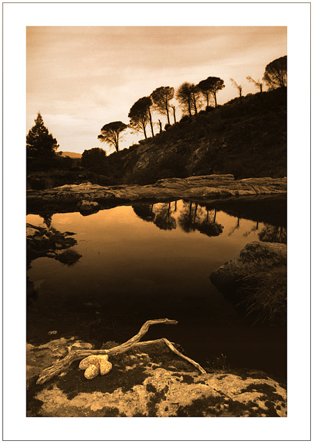 """фото """"Calmness"""" метки: пейзаж,"""