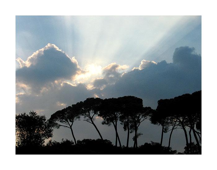 "фото ""Rays Of Light"" метки: пейзаж, лес, облака"