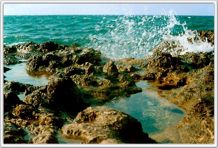 "фото ""On The Sea"" метки: пейзаж, вода, лето"