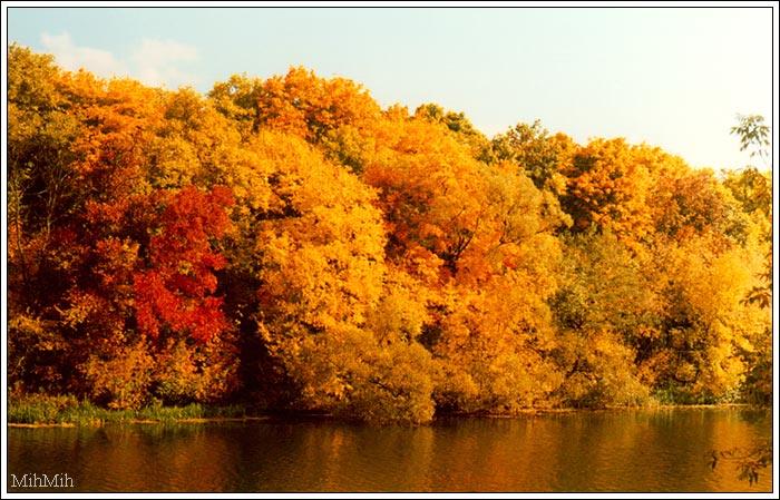 """фото """"Осенняя палитра"""" метки: пейзаж, осень"""