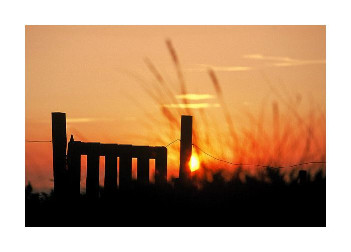 "фото ""The Fence"" метки: пейзаж, закат"