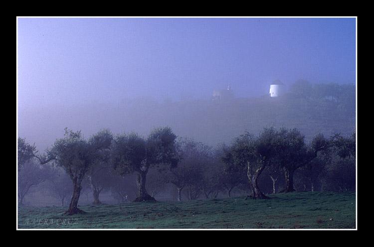 """фото """"Misterious Misty"""" метки: пейзаж,"""
