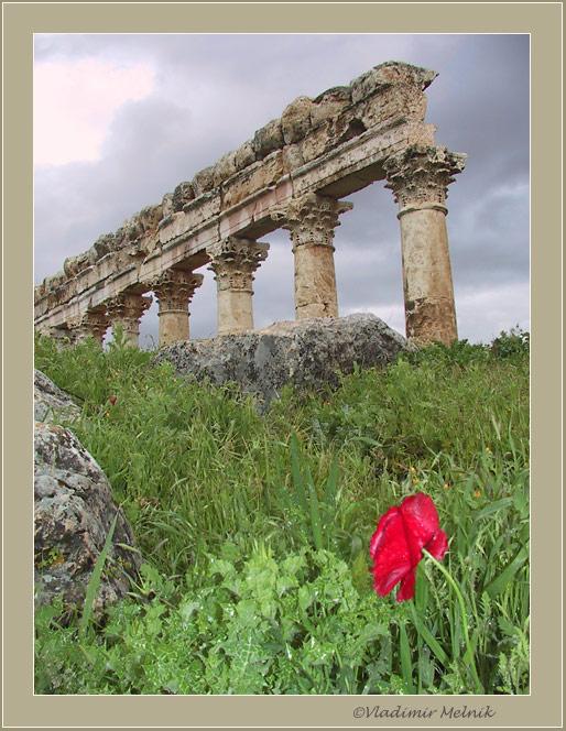 """фото """"Врастая в Землю, и вырастая из нее..."""" метки: архитектура, путешествия, пейзаж, Азия"""
