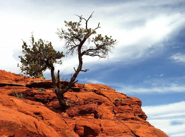 """фото """"Red Rock High"""" метки: путешествия, пейзаж, Северная Америка, облака"""