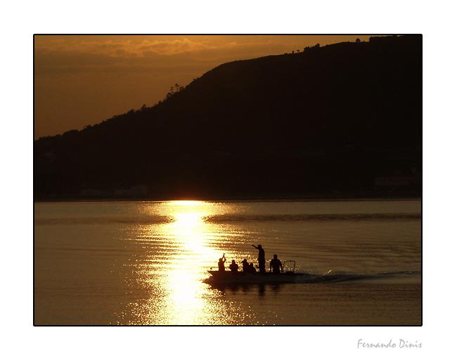 "фото ""Celebration of fishes"" метки: пейзаж, жанр, вода"