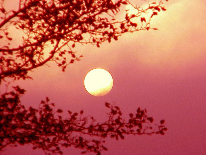 """фото """"Sunset in Portugal"""" метки: пейзаж, закат"""