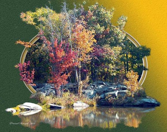 """фото """"Fall Pond"""" метки: природа, пейзаж, лето"""