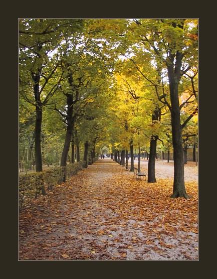 """фото """"Autumn Park"""" метки: пейзаж, осень"""