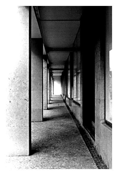"фото ""The shape taking a form.. ir is it the form taking"" метки: архитектура, пейзаж,"