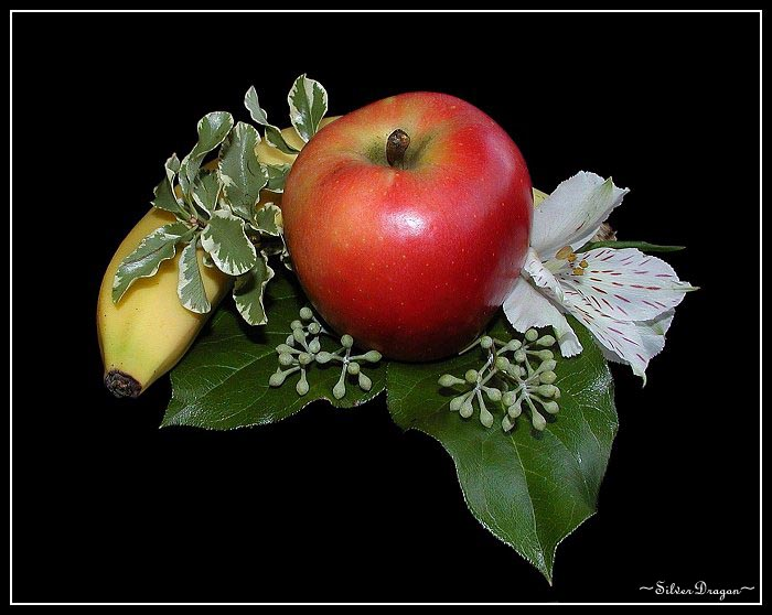 "фото ""At Summer`s End"" метки: природа, натюрморт, цветы"