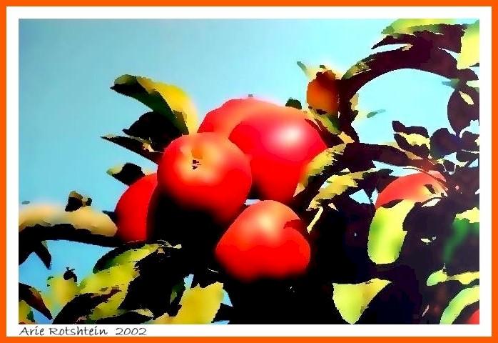 "фото ""Shiny Red"" метки: фотомонтаж,"
