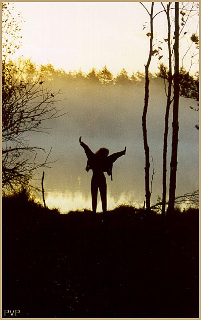 """фото """"Летучая мышь"""" метки: пейзаж, закат, осень"""