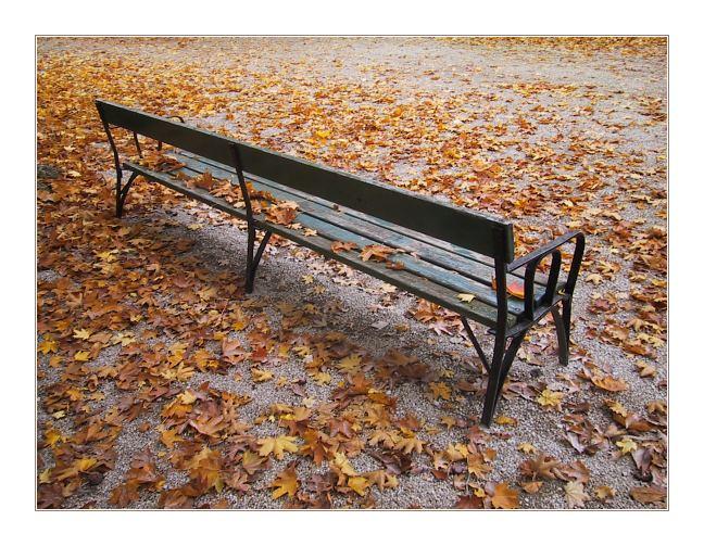 """фото """"*****"""" метки: абстракция, пейзаж, осень"""
