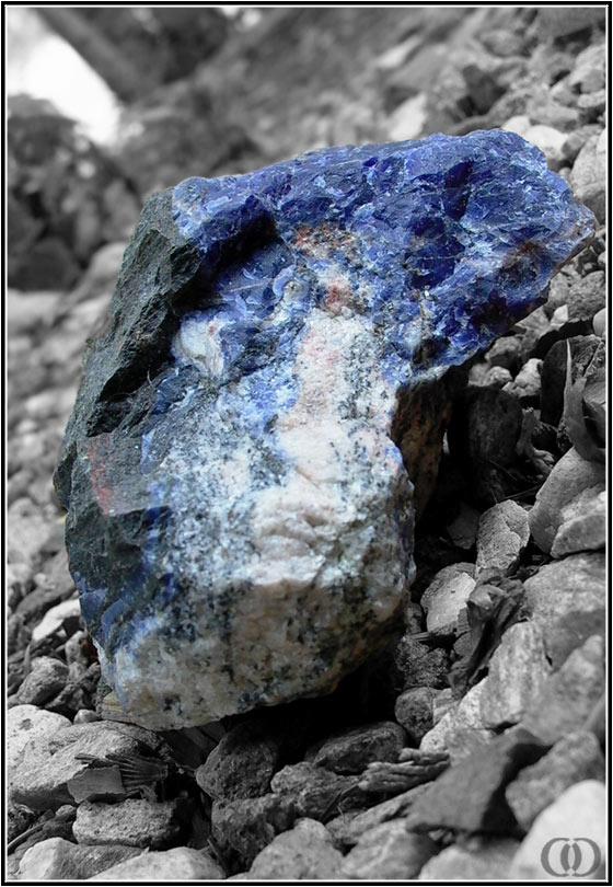 "фото ""A Gem Among Stones"" метки: природа,"