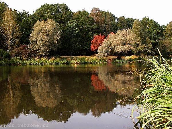 """фото """"Цветной мир #2"""" метки: пейзаж, путешествия,"""