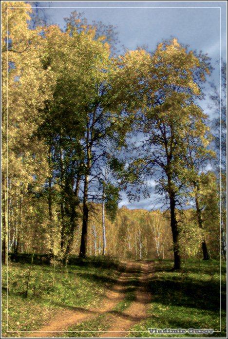 """фото """"Вдоль Шадрихи"""" метки: пейзаж, фотомонтаж, осень"""